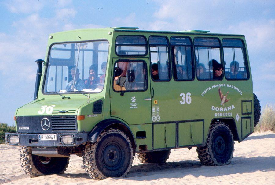 Doñana 2004