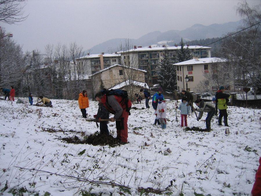 Zuhaitz Eguna 2005